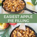 Quick recipe for apple pie filling
